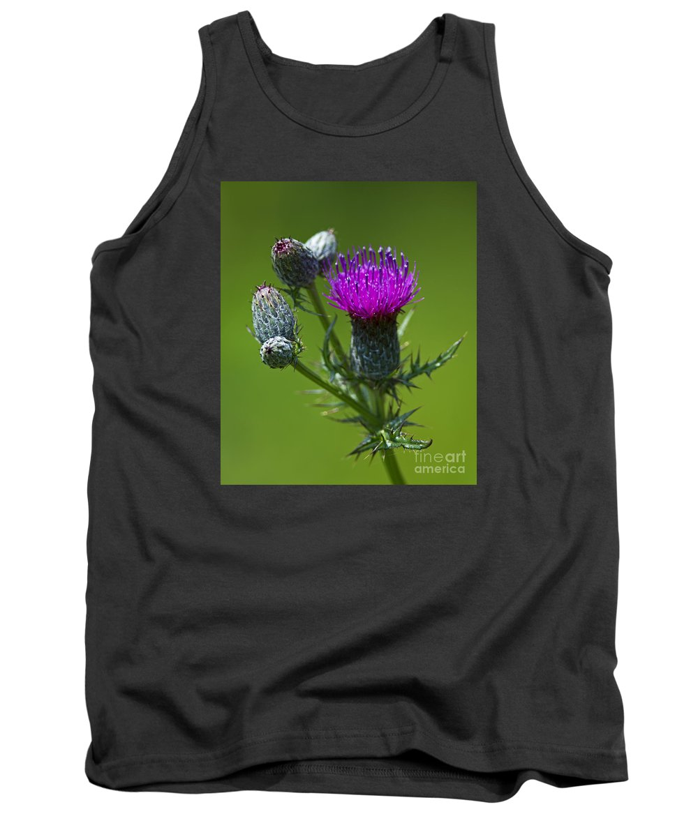 Festblues Tank Top featuring the photograph Beauty Before Glory... by Nina Stavlund