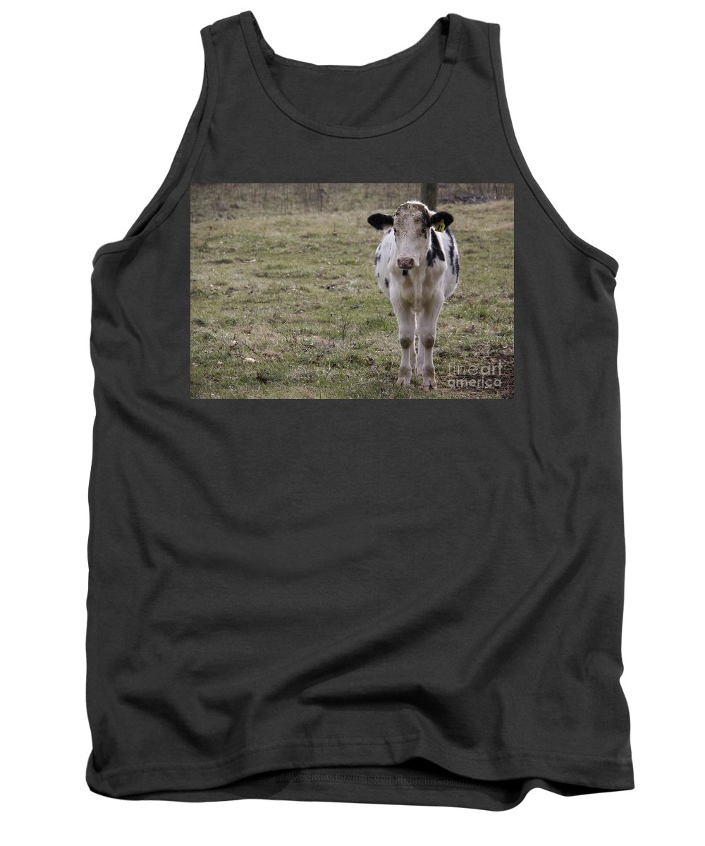 Cow Tank Top featuring the photograph Daisy by Teresa Mucha