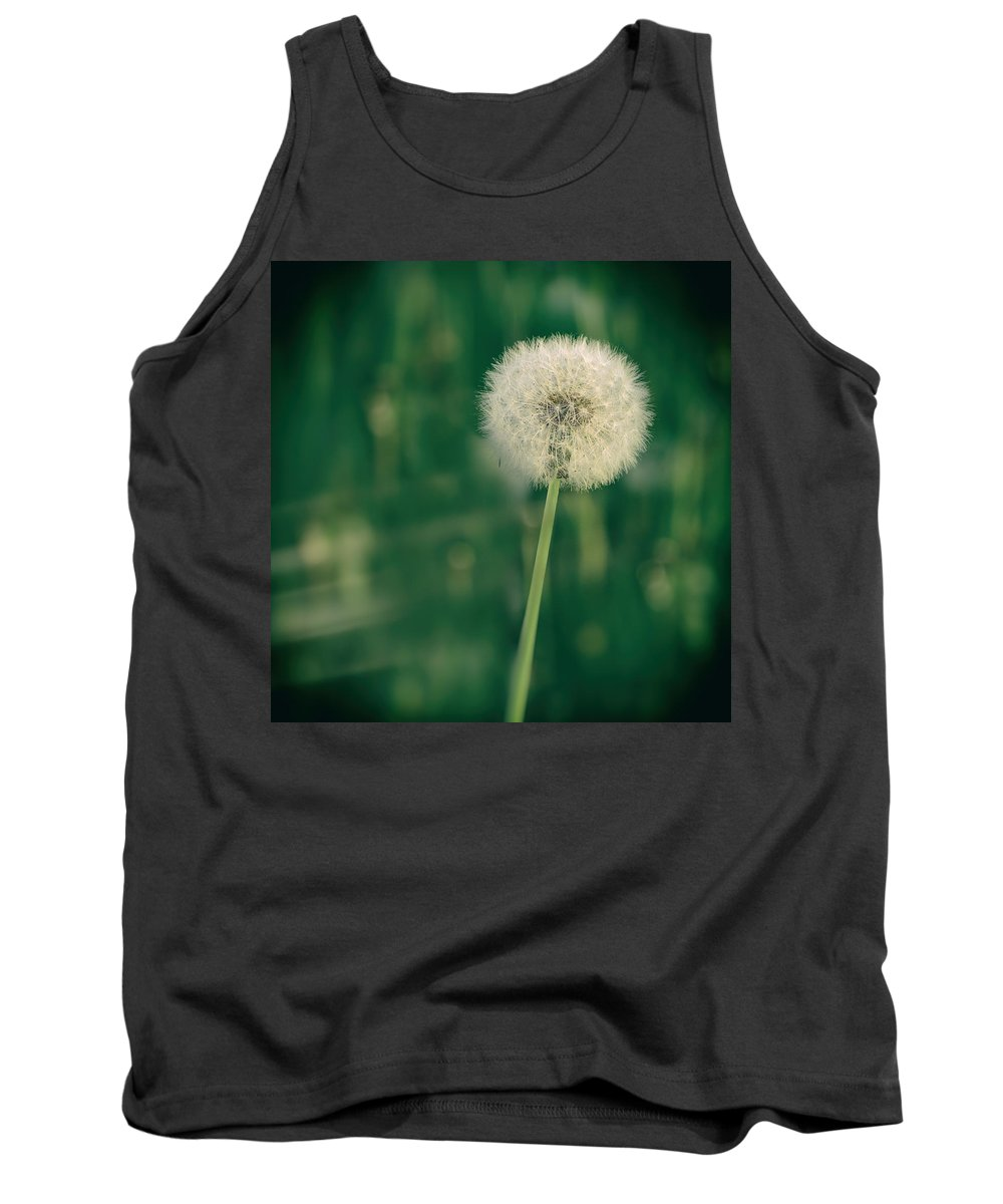 Dandelion Tank Top featuring the photograph Dandelion by TouTouke A Y