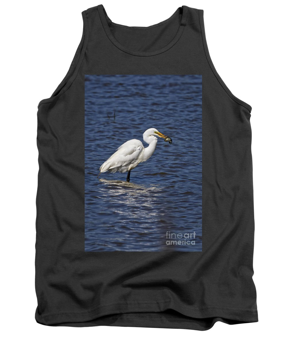 Dover Tank Top featuring the photograph Great Egret by Ronald Lutz