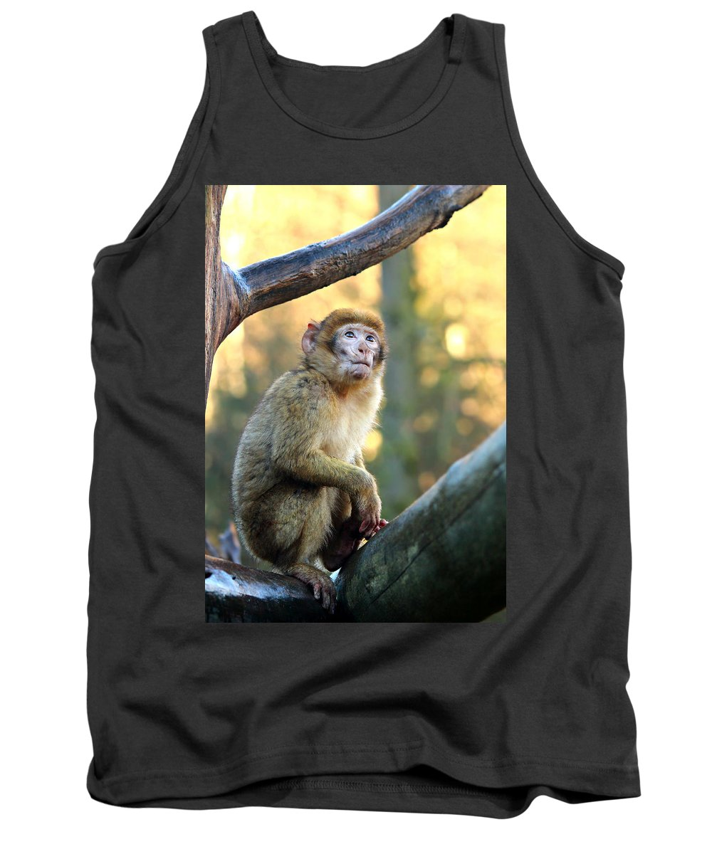Monkey Tank Top featuring the photograph Little Monkey by Heike Hultsch