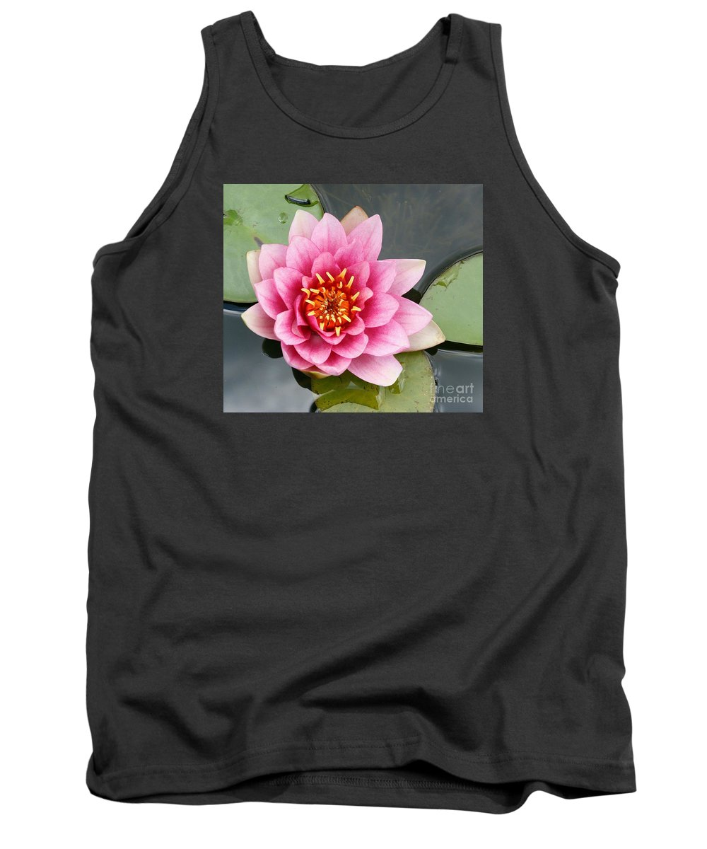 Lily Tank Top featuring the photograph Pink Waterlily by Christiane Schulze Art And Photography