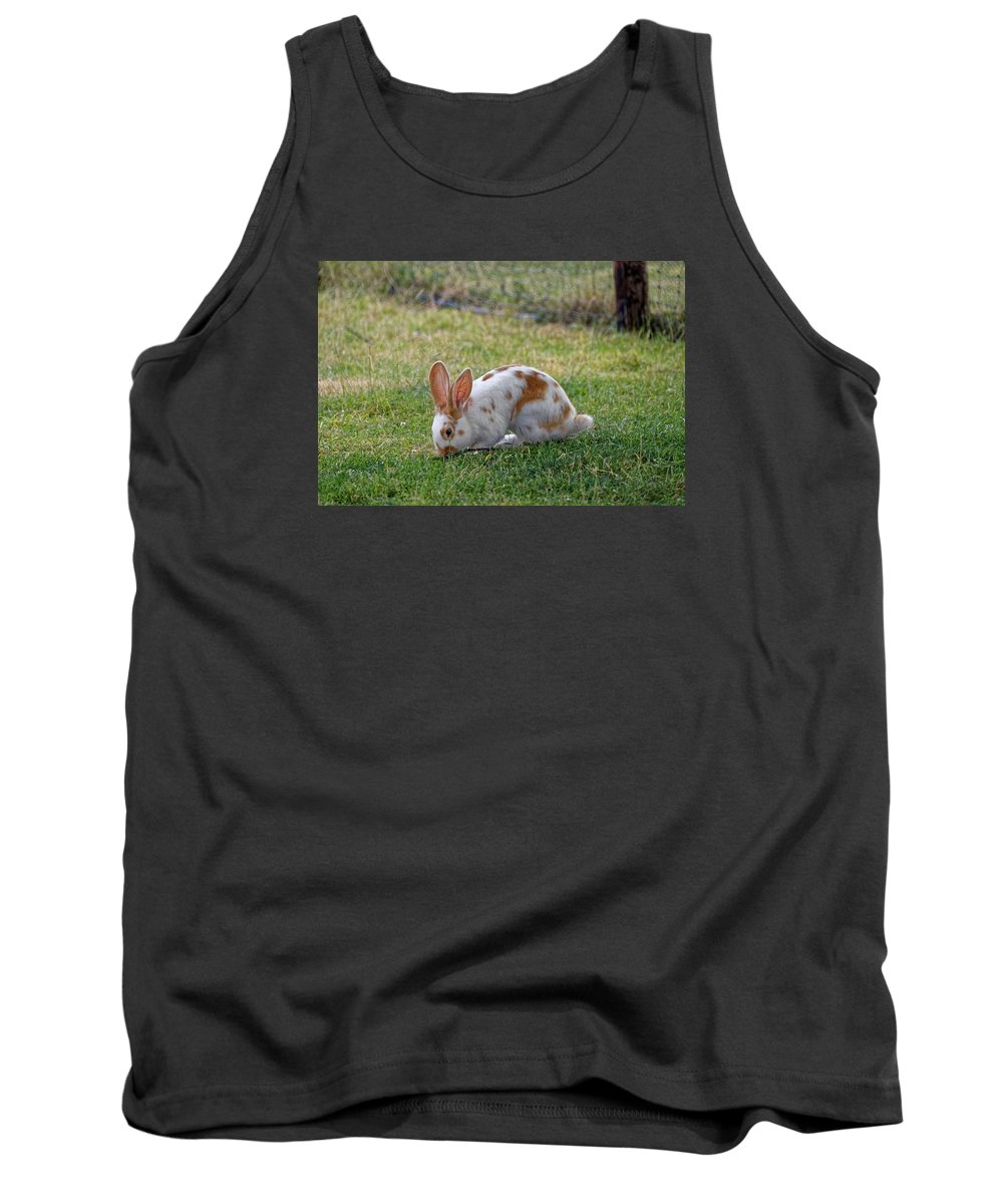 Rabbit Tank Top featuring the photograph Rabbit by FL collection
