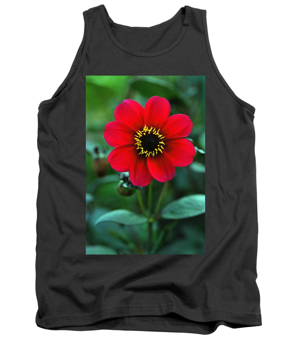 British Tank Top featuring the photograph Red Flower by Corey Hochachka