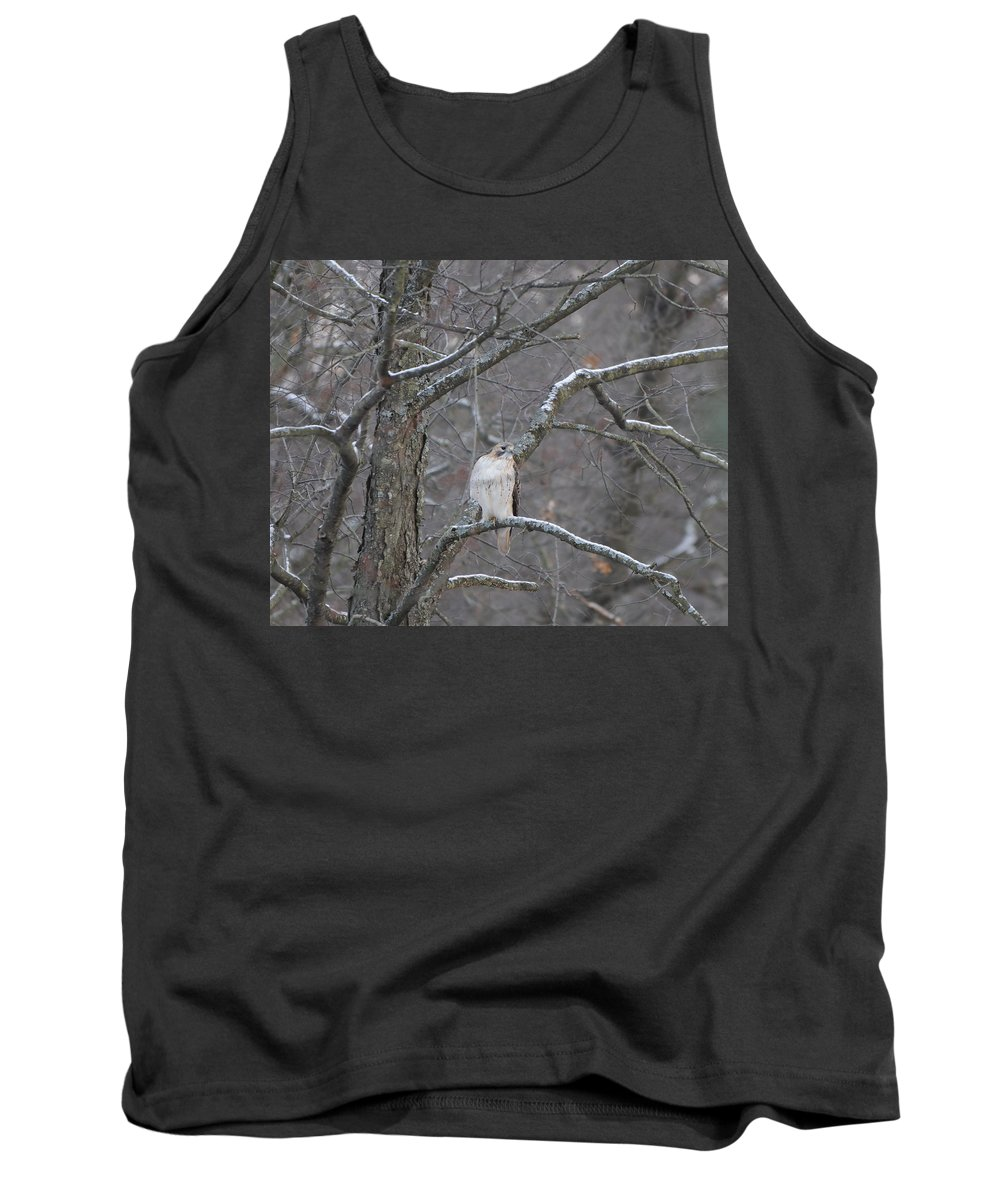 Red-tailed Hawk Tank Top featuring the photograph Red-tailed Hawk by Scott Angus