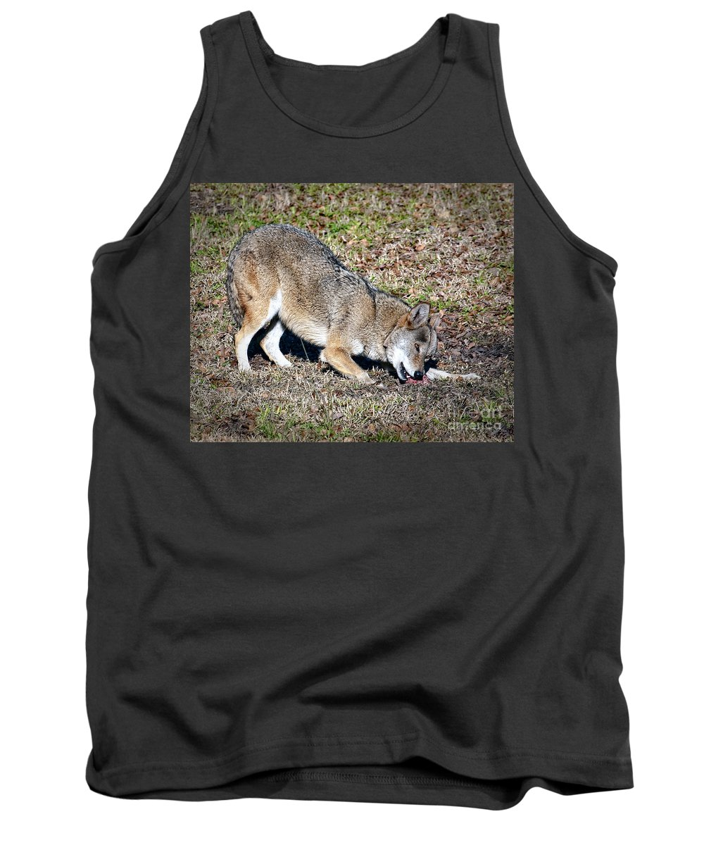 Red Wolf Tank Top featuring the photograph Red Wolf by Ronald Lutz