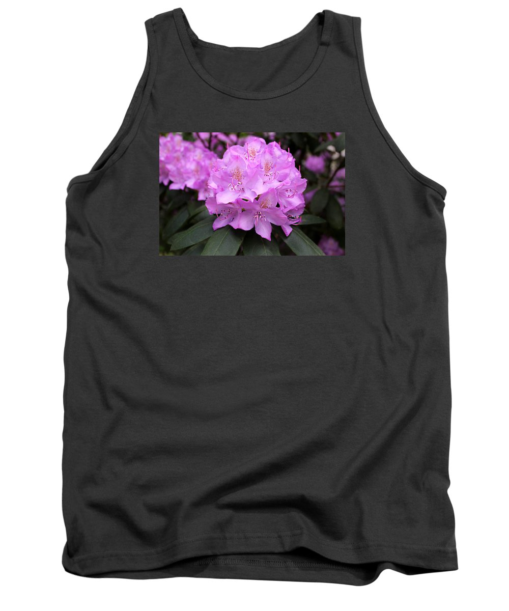 Rhododendron Tank Top featuring the photograph Rhododendron ' Roseum Elegans ' by William Tanneberger