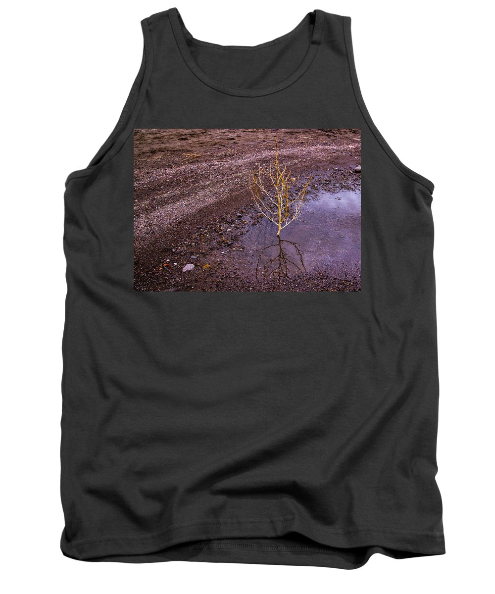 Grand Canyon Tank Top featuring the photograph Scrub by Angus Hooper Iii