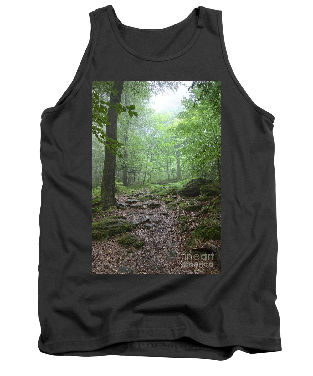 Atmosphere Tank Top featuring the photograph Silence Of The Forest by Michal Boubin