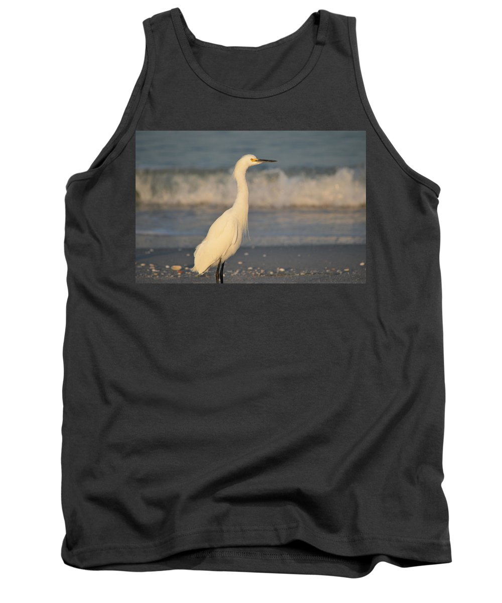 Snowy Egret Tank Top featuring the photograph Snowy Egret by James Petersen