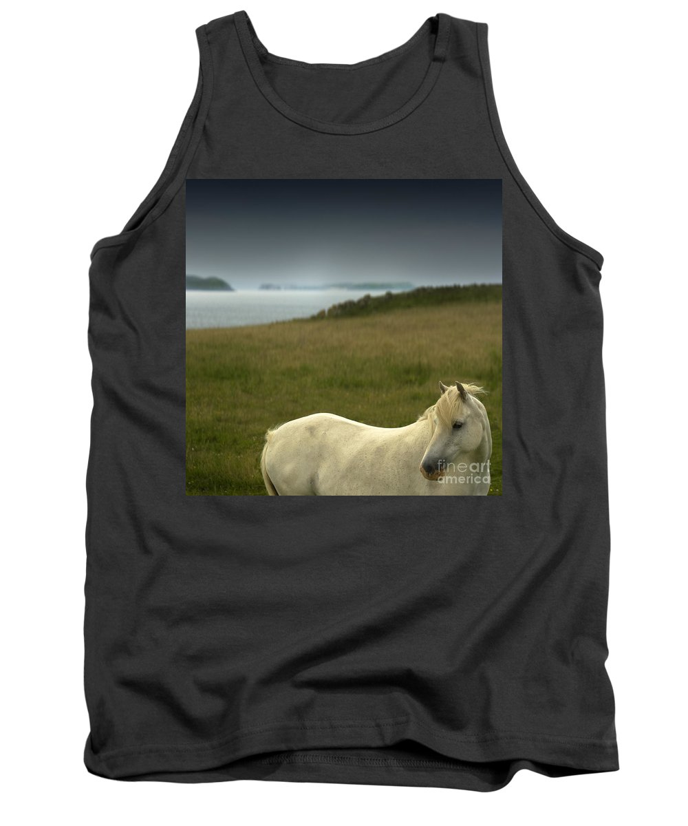 Welsh Pony Tank Top featuring the photograph The Welsh Pony by Angel Ciesniarska