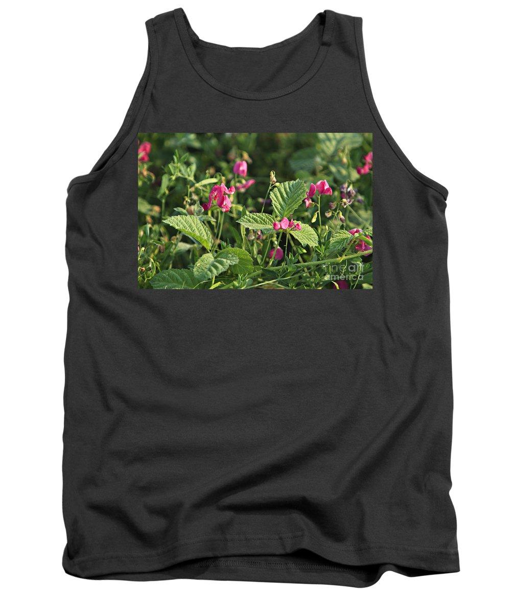 Field Tank Top featuring the photograph Wild Grass Flower by Dan Radi