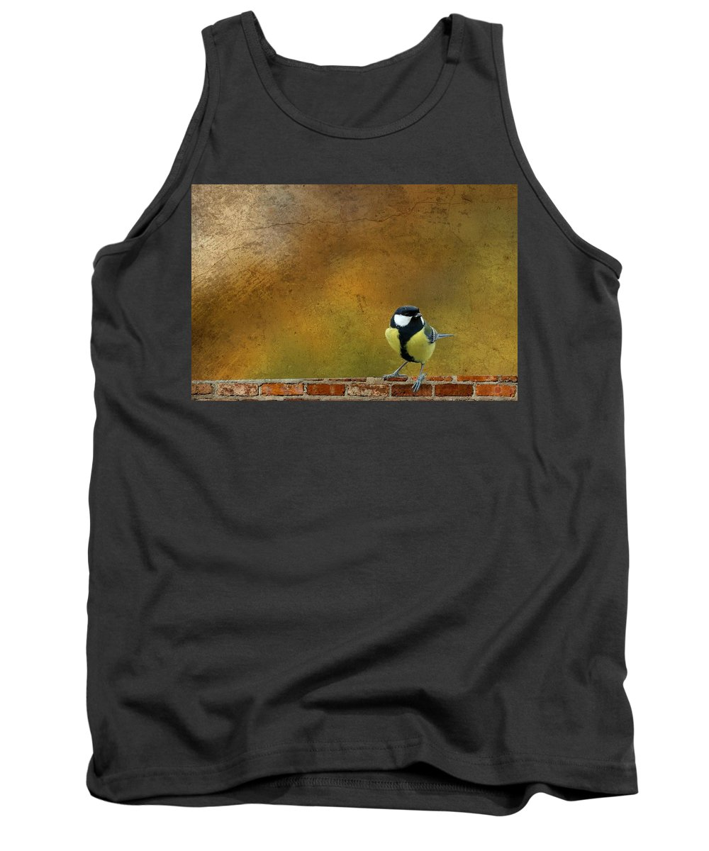 Decoration Tank Top featuring the photograph Birds by Heike Hultsch
