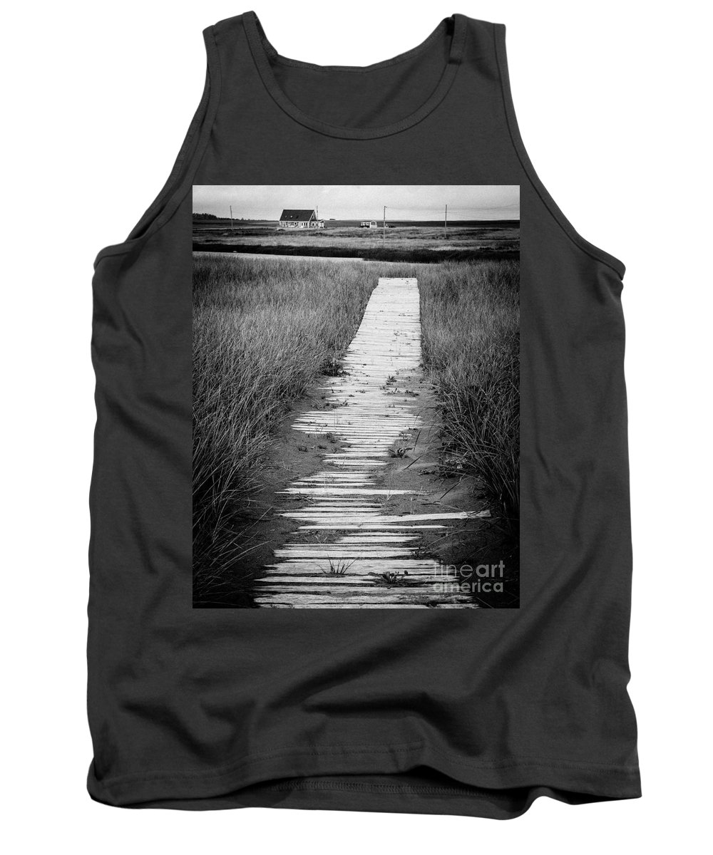 Reeds Tank Top featuring the photograph Boardwalk Through The Dunes by Edward Fielding