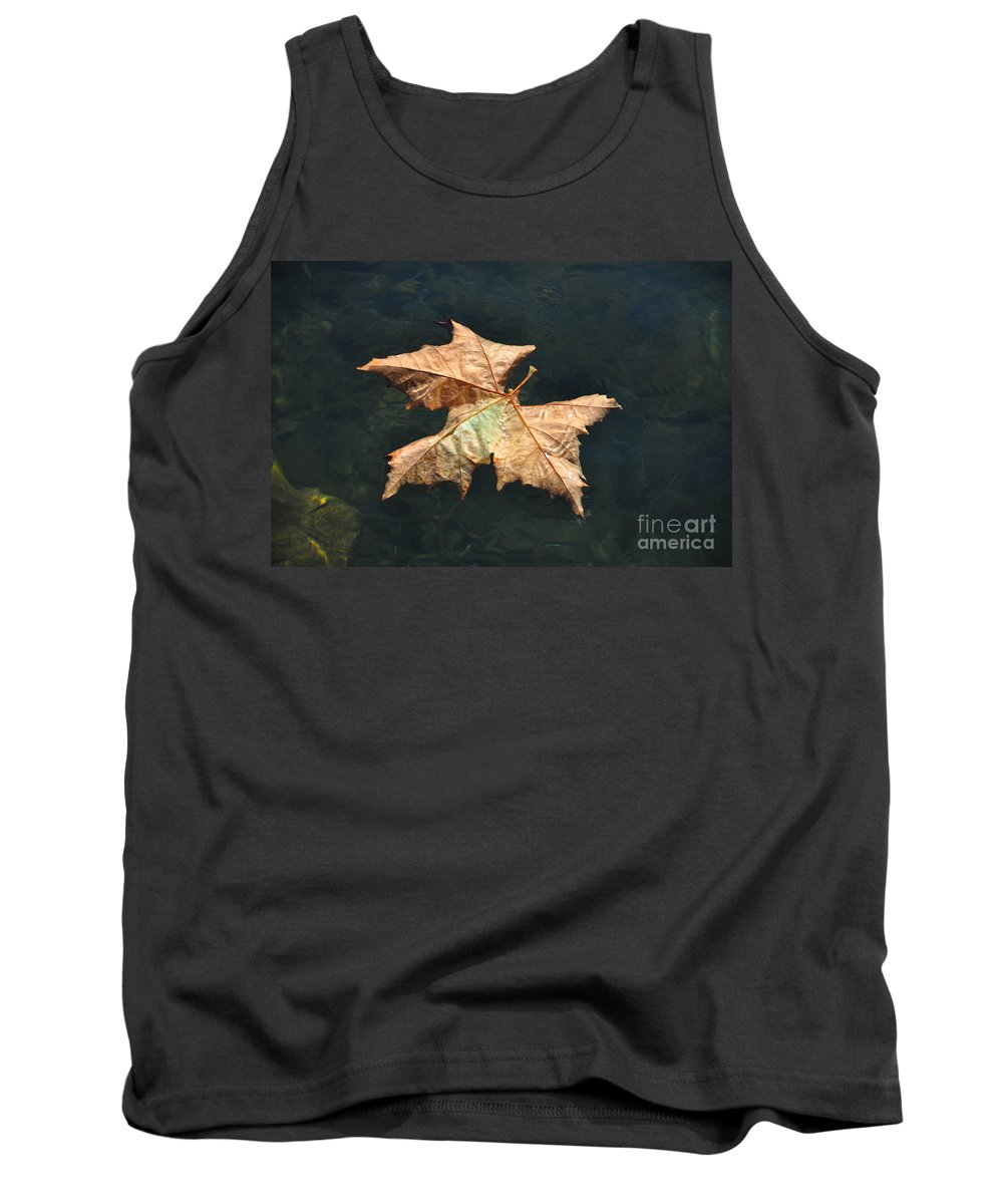 Maple Tank Top featuring the photograph Maple Leaf by Mats Silvan