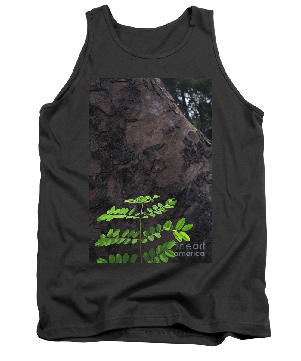 New Born Tank Top featuring the photograph New Leaves Born On Old Tree by Rudra Narayan Mitra