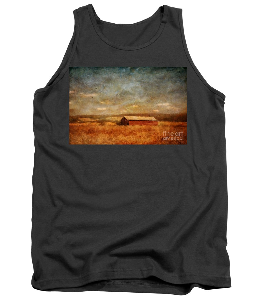 Barn Tank Top featuring the photograph October Afternoon by Lois Bryan