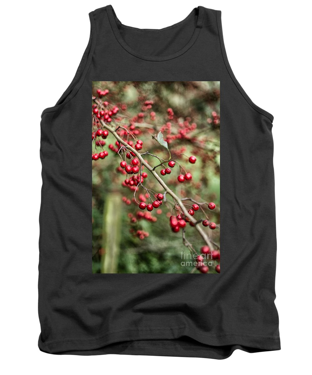 Red Berries Tank Top featuring the photograph Red Berries by Brothers Beerens