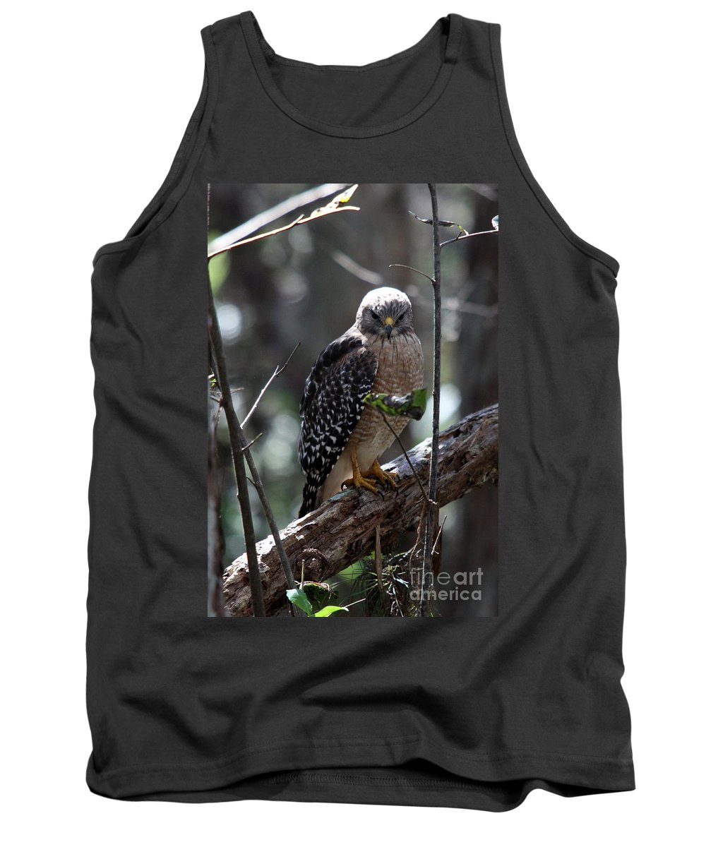 Hawk Tank Top featuring the photograph Red - Shouldered Hawk II by Christiane Schulze Art And Photography