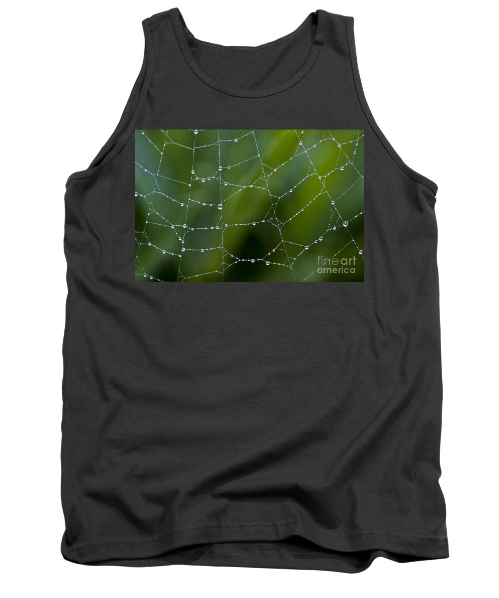 Aranae Tank Top featuring the photograph Spider Web With Dew Drops by Jim Corwin