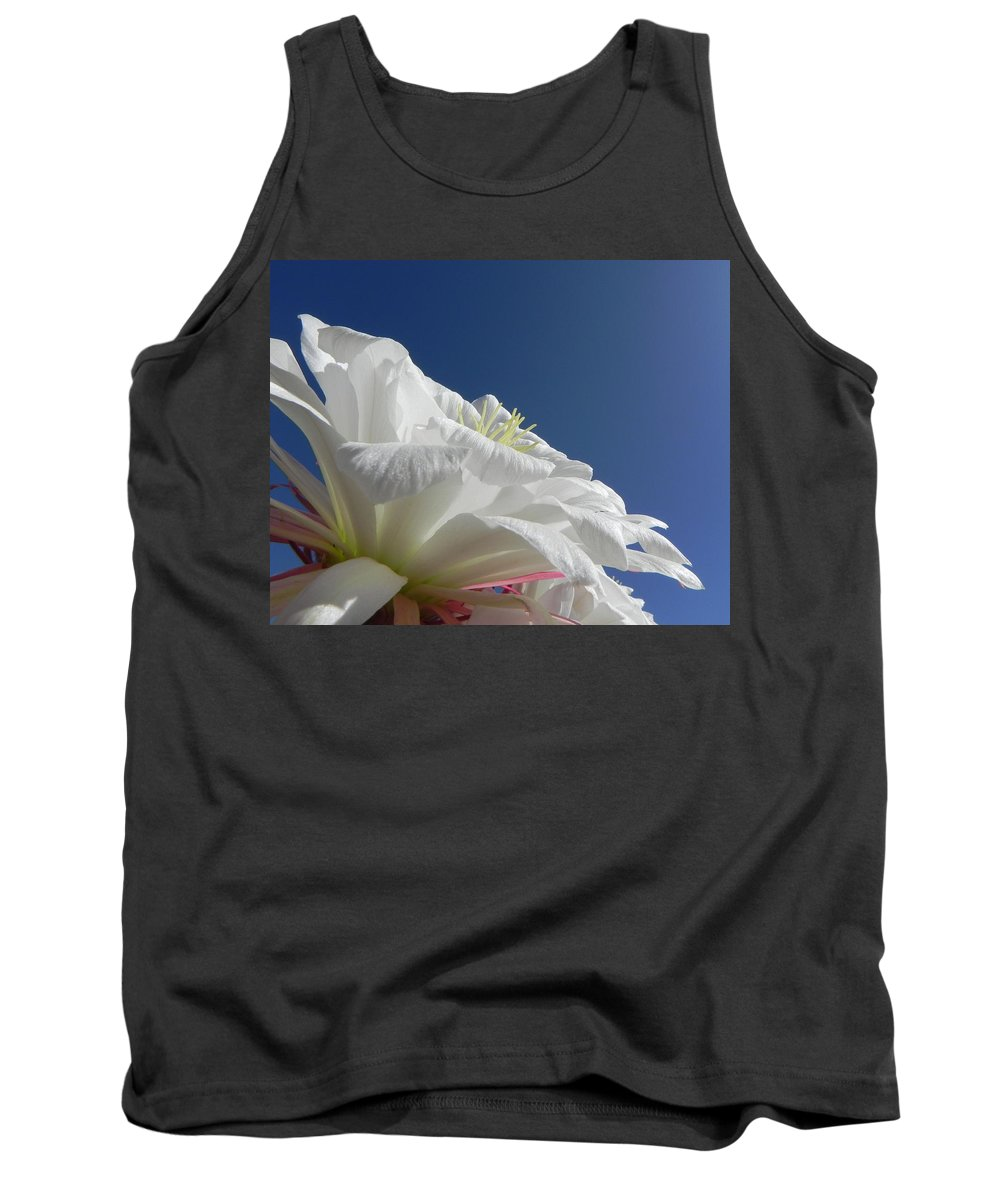 Flower Tank Top featuring the photograph Striking Contrast by Deb Halloran
