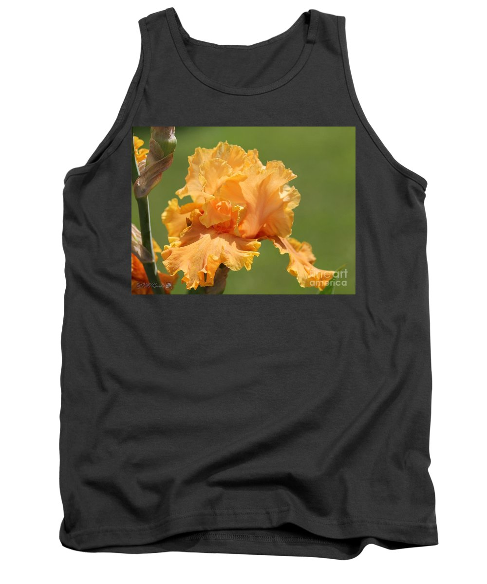 Mccombie Tank Top featuring the photograph Tall Bearded Iris Named Penny Lane by J McCombie