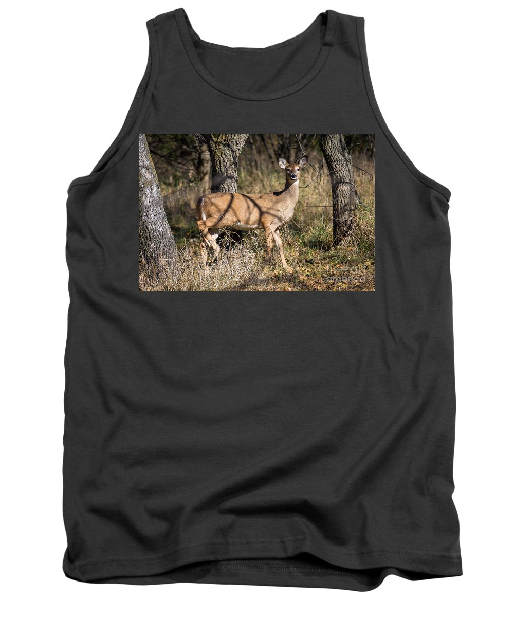 Deer Tank Top featuring the photograph 25 Yards Broadside by M Dale