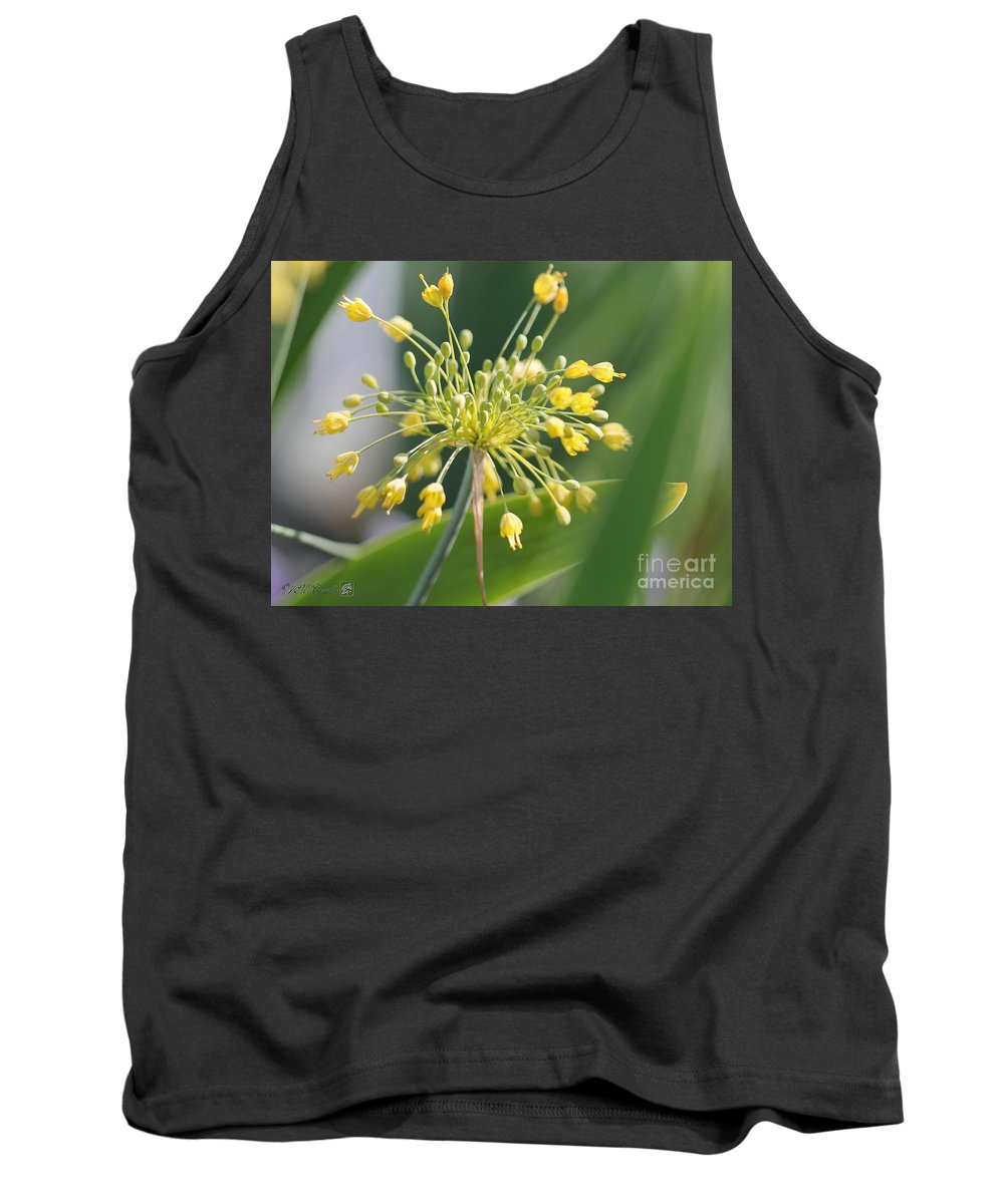 Mccombie Tank Top featuring the photograph Allium Flavum Or Fireworks Allium by J McCombie