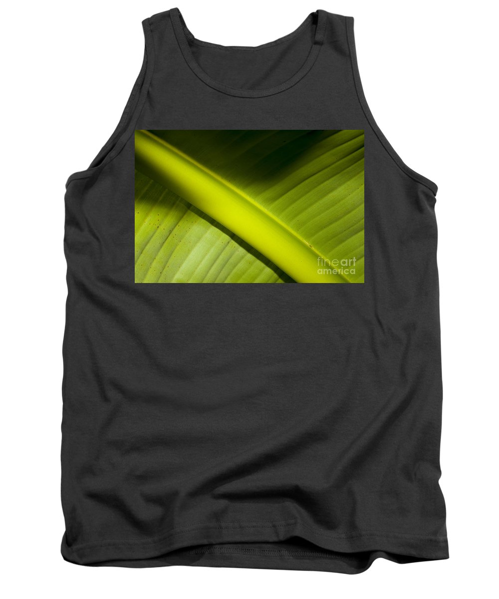 Banana Leaf Tank Top featuring the photograph Banana Leaf by Mats Silvan
