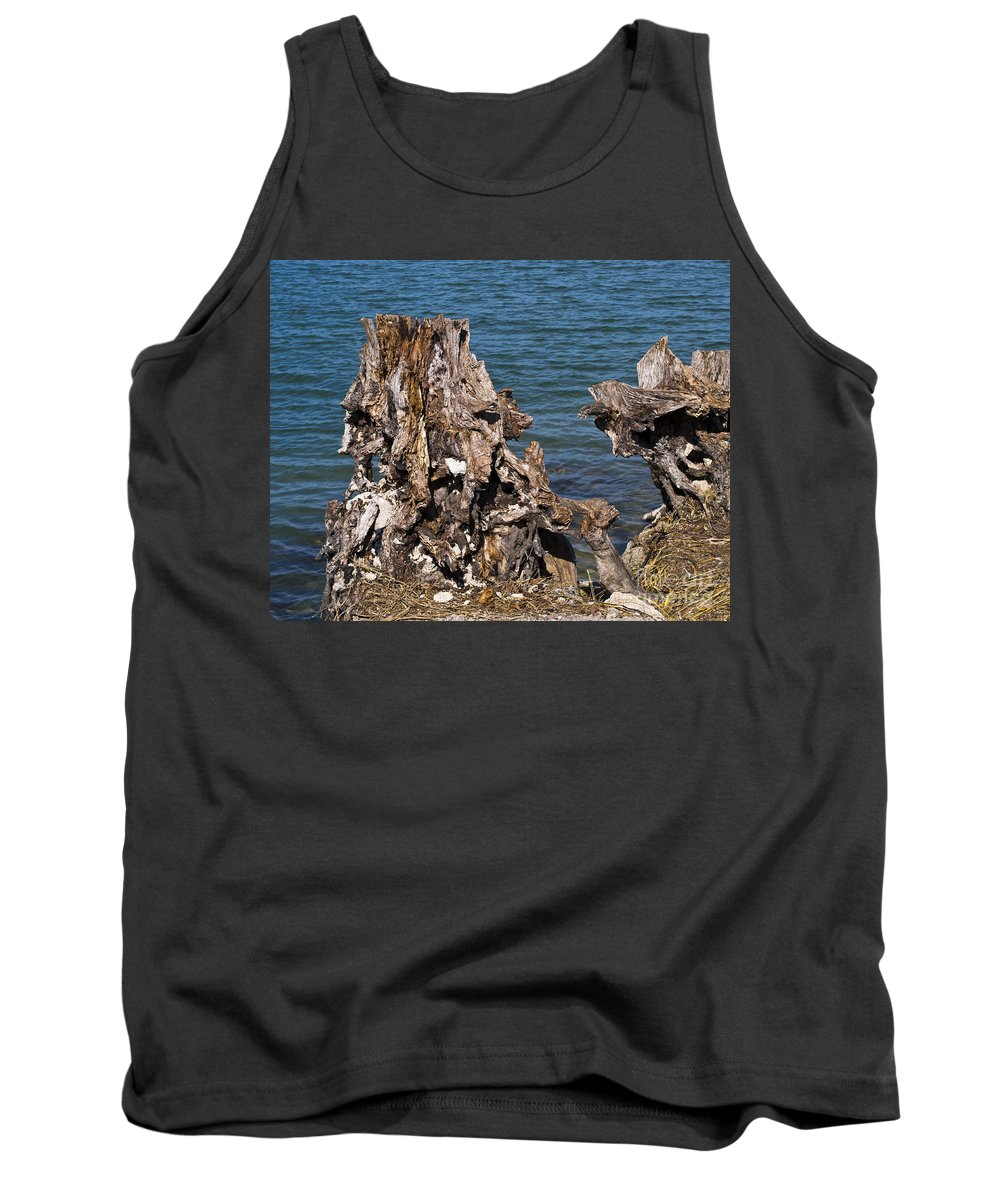 Driftwood Tank Top featuring the photograph Driftwood by Allan Hughes
