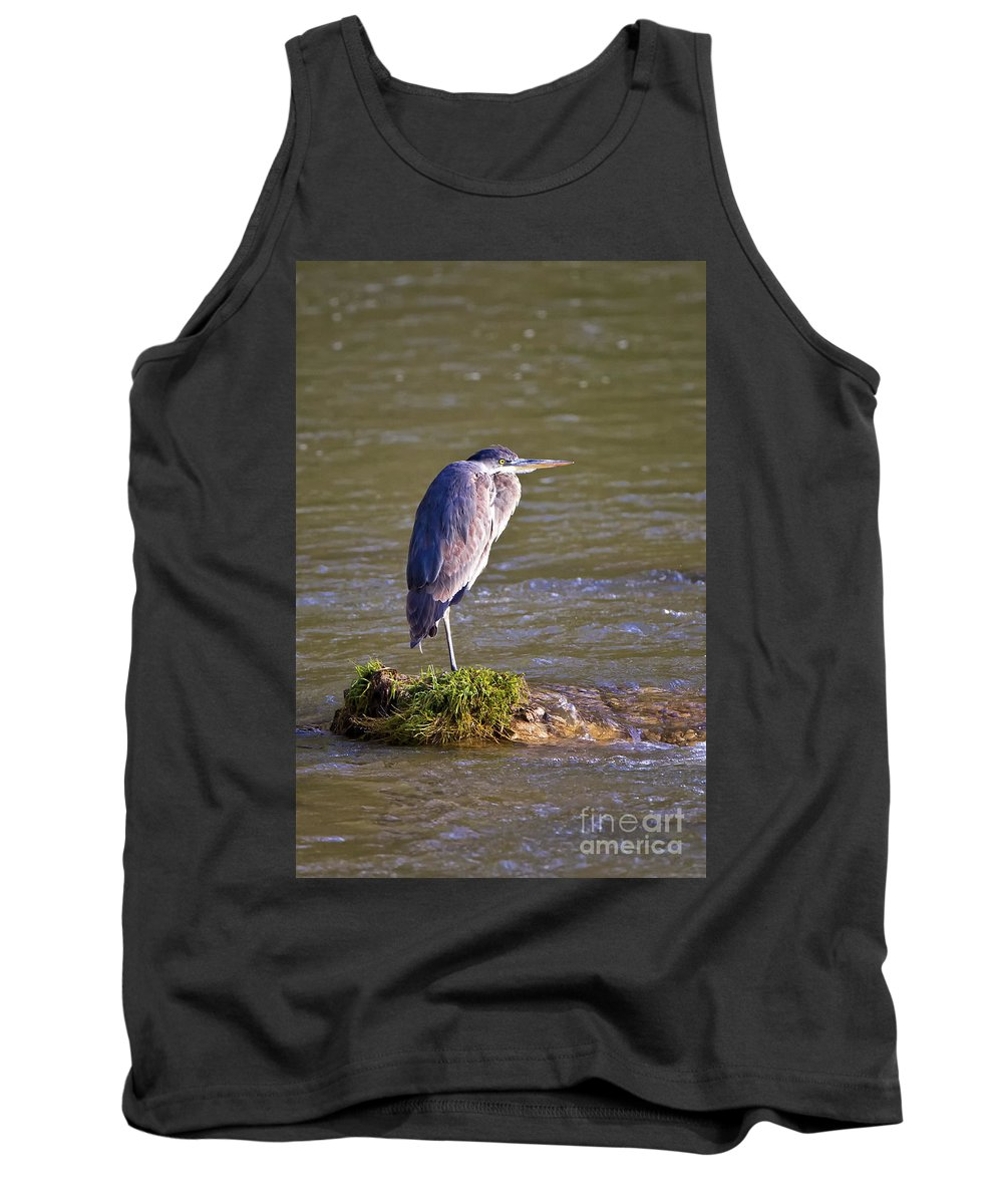 Beaver Creek Tank Top featuring the photograph Great Egret by Ronald Lutz