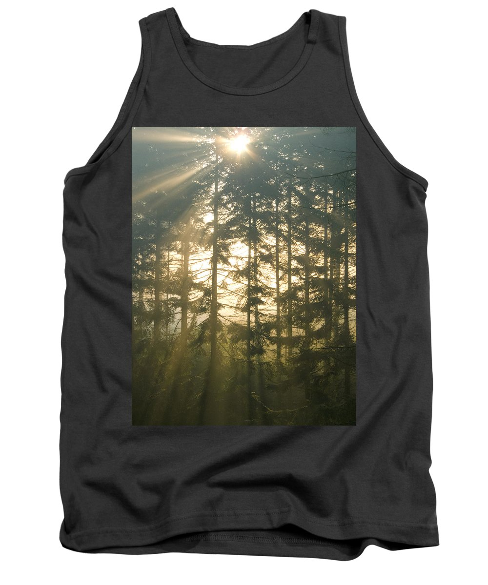 Nature Tank Top featuring the photograph Light In The Forest by Daniel Csoka
