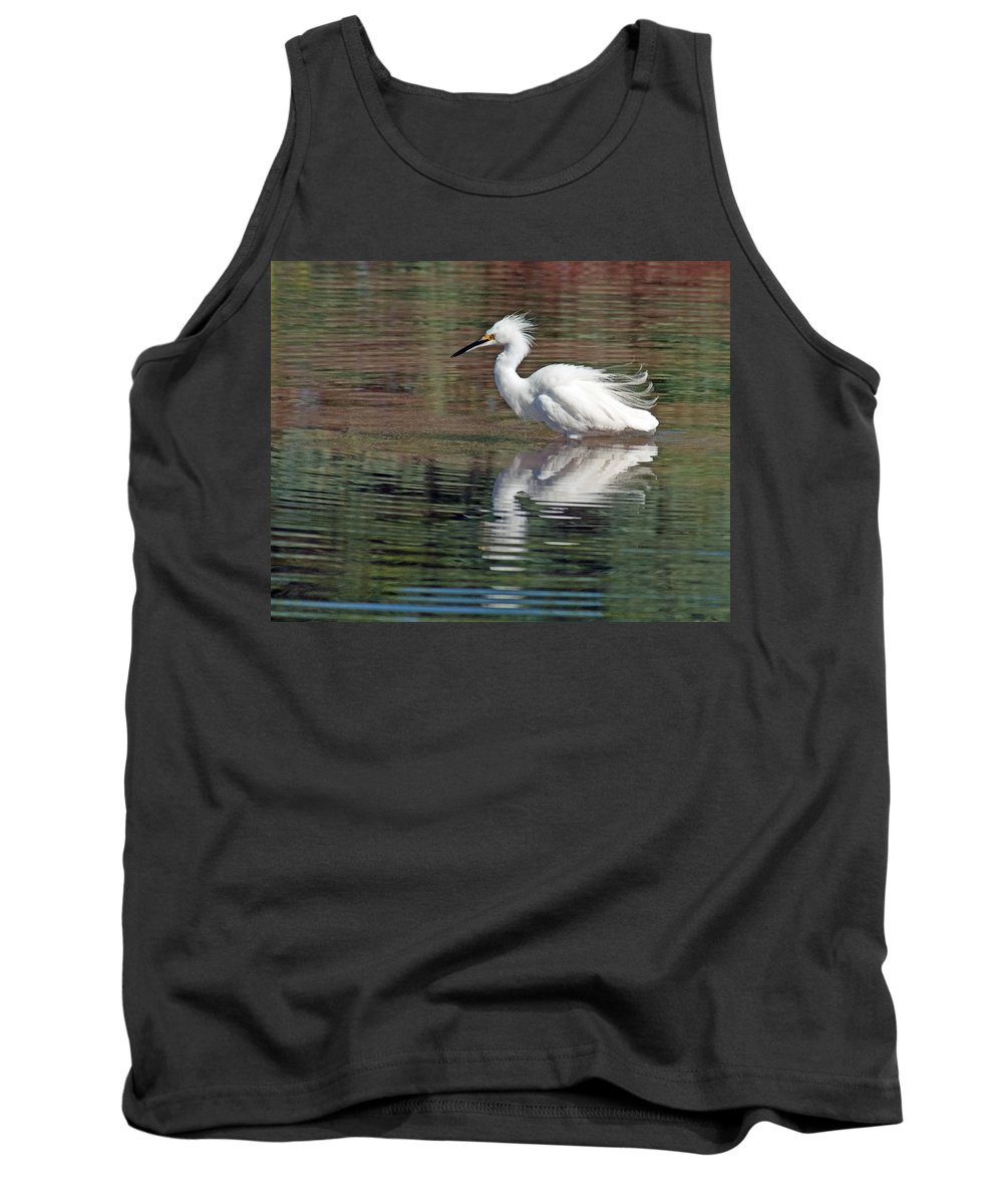 Egrets Tank Top featuring the photograph Snowy Egret by Tam Ryan