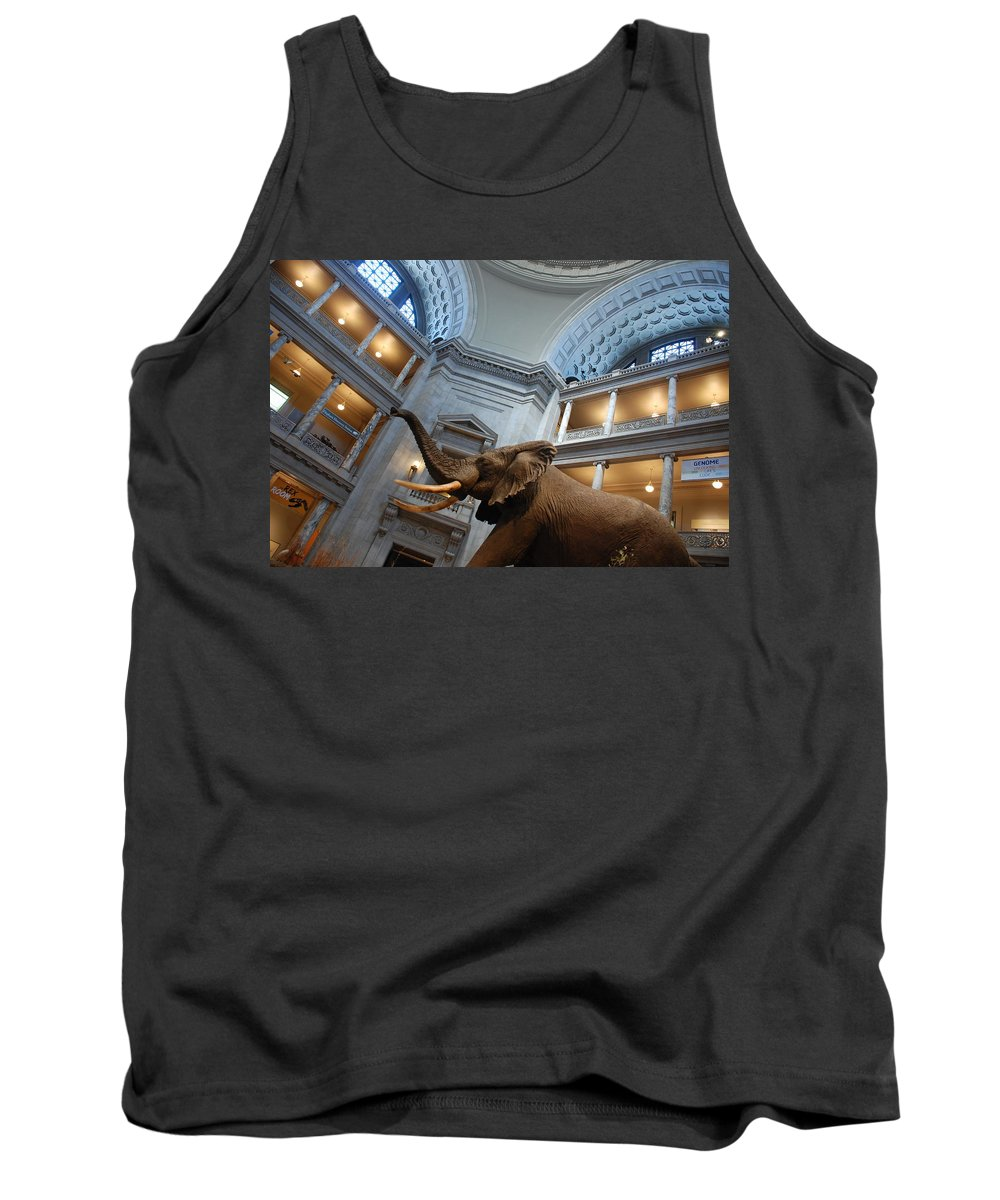 Bull Elephant Tank Top featuring the photograph Bull Elephant In Natural History Rotunda by Kenny Glover