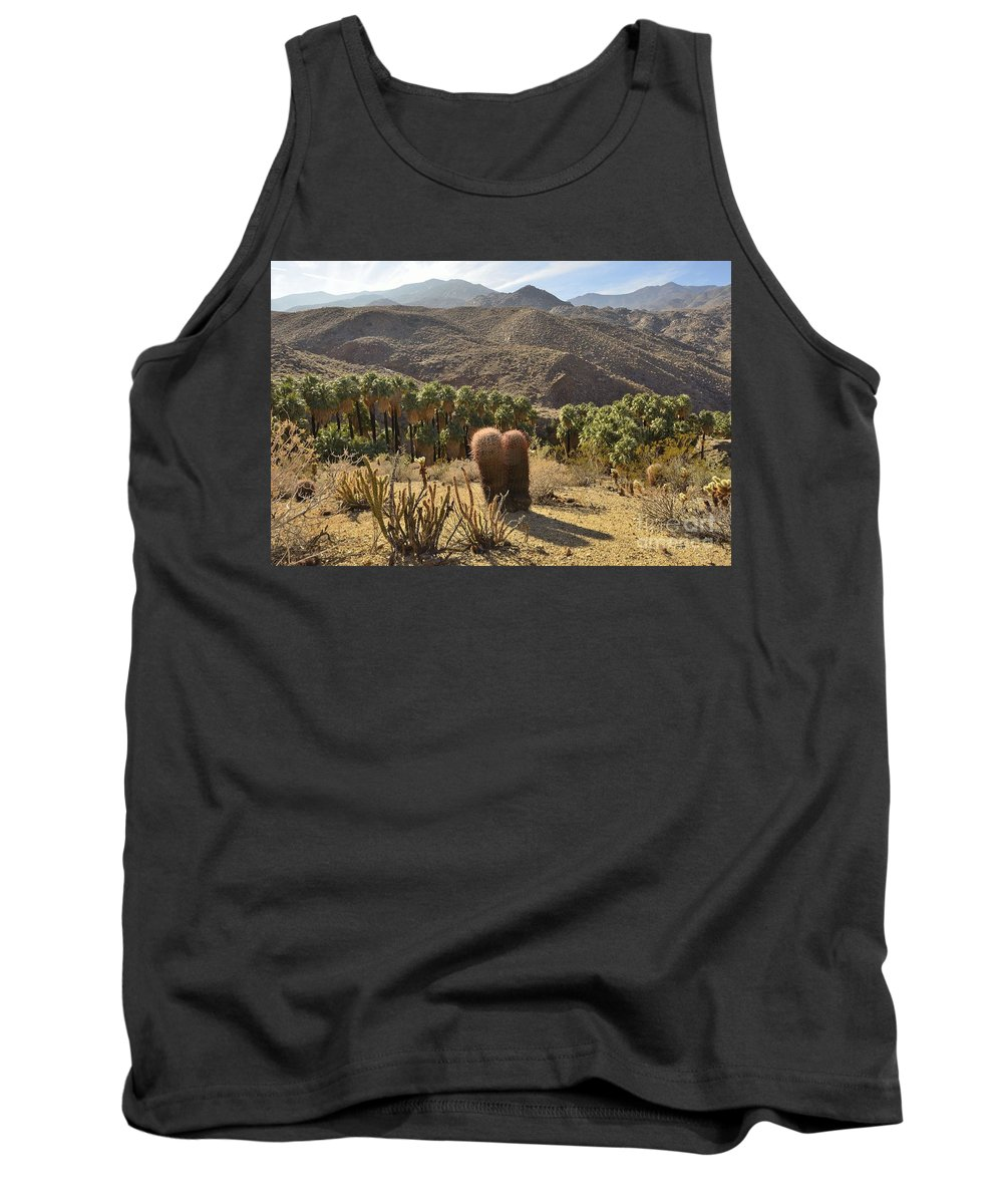 Indian Canyons Tank Top featuring the photograph Indian Canyons by Yinguo Huang