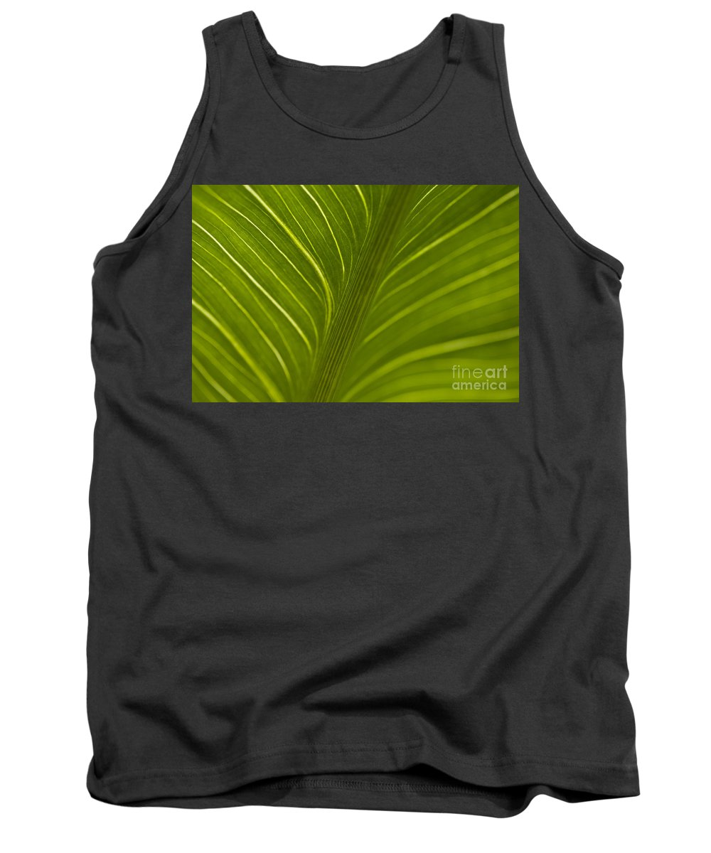 Beauty Tank Top featuring the photograph Calla Lily Stem Close Up by Jim Corwin