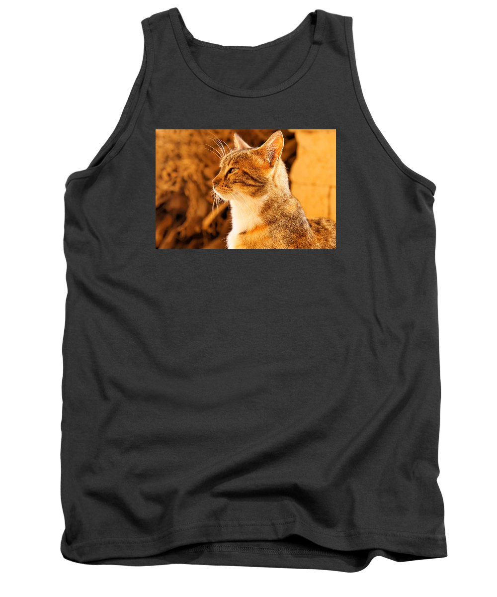 Indoors Tank Top featuring the photograph Cat by FL collection