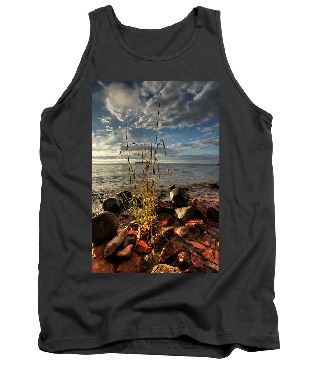 Bay Tank Top featuring the photograph A Bunch Of Grass by Jakub Sisak