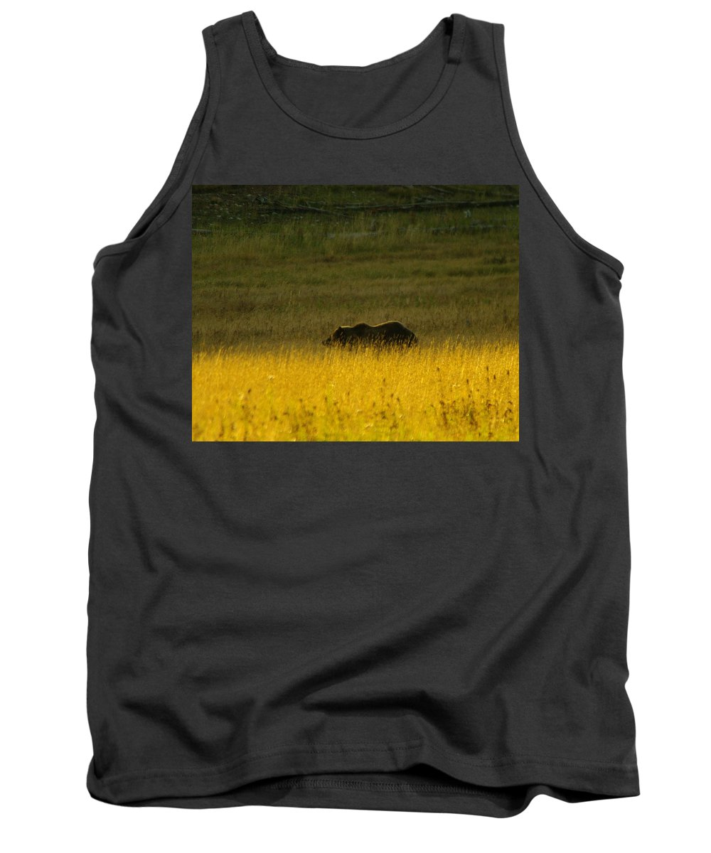 Bears Tank Top featuring the photograph A Silver Back by Jeff Swan