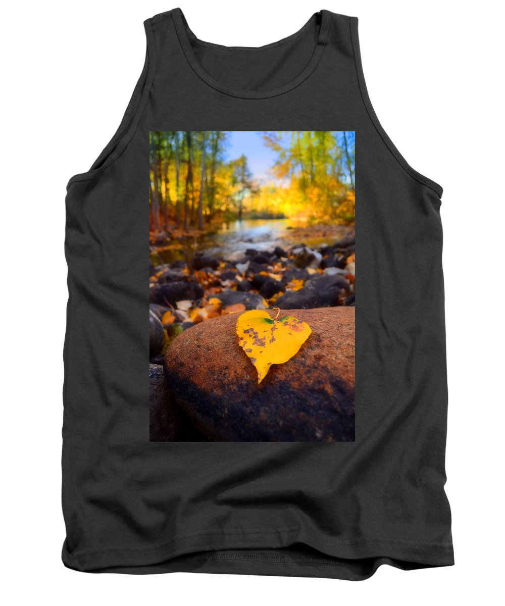 Leaf Tank Top featuring the photograph A Single Leaf Amongst Many by Tara Turner