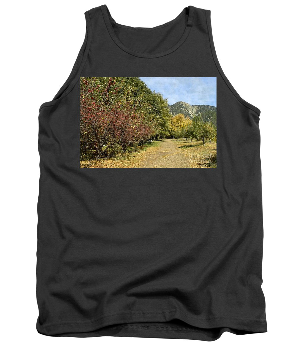 Path Tank Top featuring the photograph A Walk Through The Orchard by Peggy Hughes