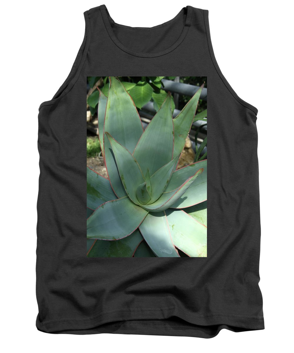 Agave Tank Top featuring the photograph Agave by Christiane Schulze Art And Photography