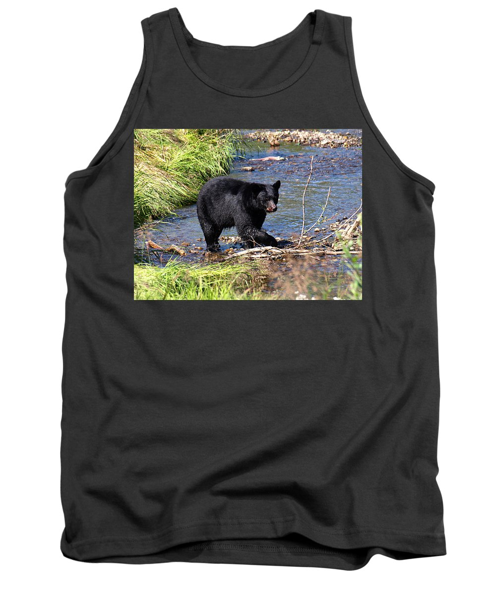Bear Tank Top featuring the photograph Alaskan Black Bear Hunting In A River by Jessica Foster
