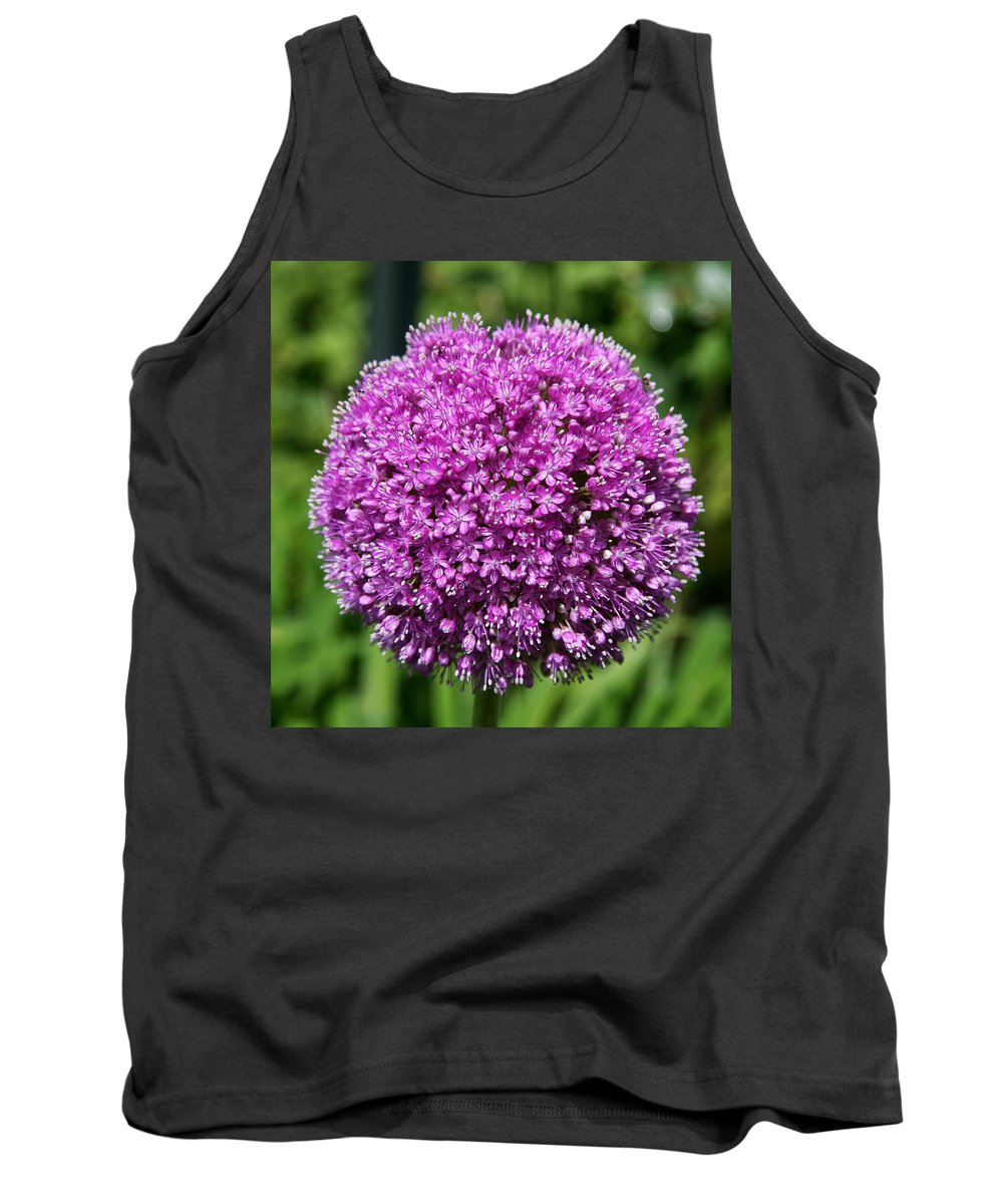 Allium Tank Top featuring the photograph Allium Globe by Christiane Schulze Art And Photography