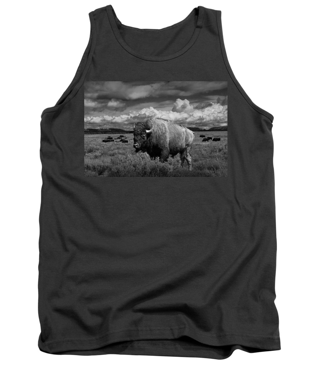 Bison Tank Top featuring the photograph American Buffalo Or Bison In The Grand Teton National Park by Randall Nyhof