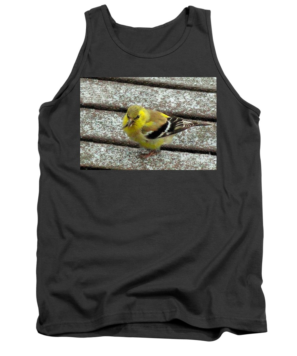 Bird Tank Top featuring the photograph American Goldfinch by Janette Boyd