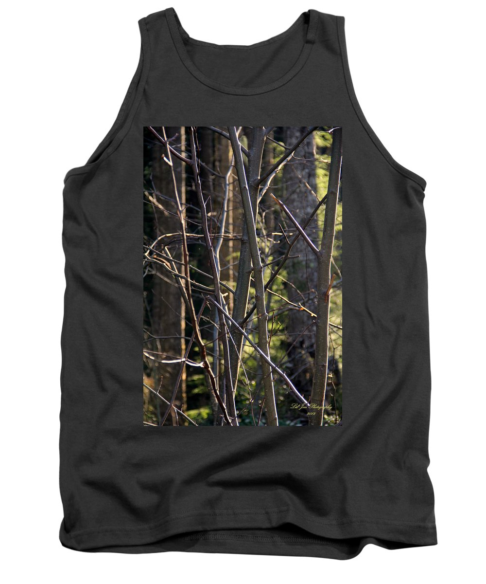 Capitol Forest Tank Top featuring the photograph An Afternoon Walk by Jeanette C Landstrom