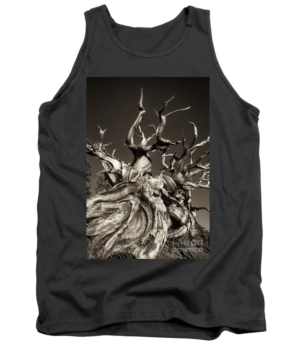 American Tank Top featuring the photograph Ancient Bristlecone Pine In Black And White by Dave Welling