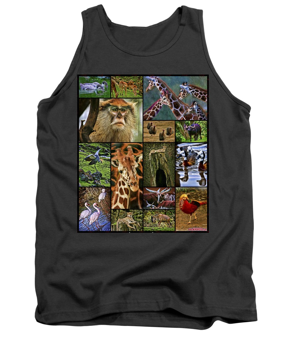 Pictures Tank Top featuring the photograph Animal Collage by Blake Richards