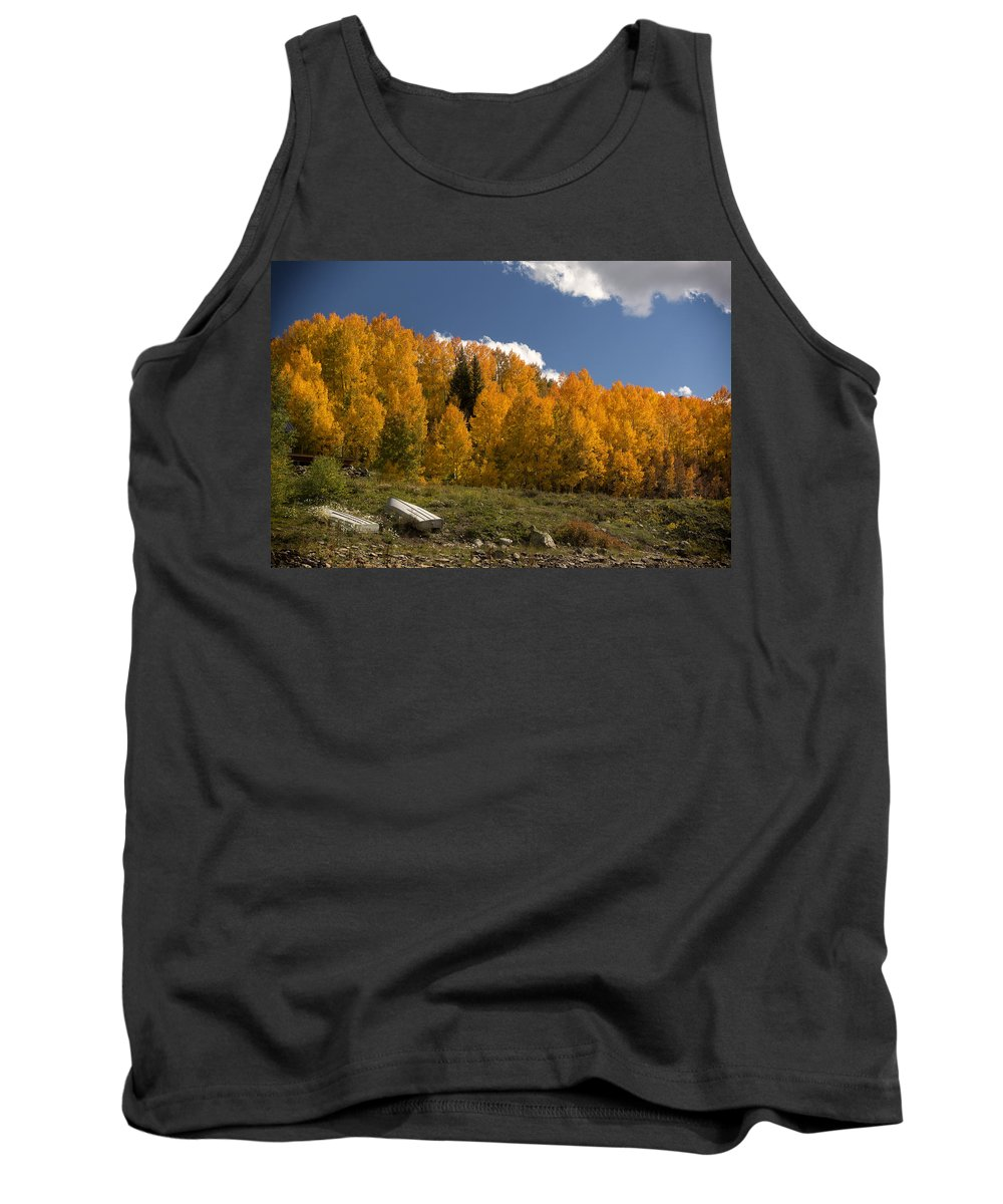 Colorado Tank Top featuring the photograph Aspen On The Road To Telluride Dsc07397 by Greg Kluempers